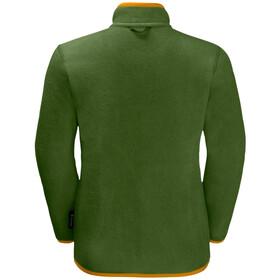 Jack Wolfskin B Iceland 3in1 Jacket Kinder antique green